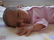 Sofie Pabyšková se narodila Petře Pabyškové a Ivovi Brémovi z Jablonce nad Nisou dne 28.12.2015. Měřila 47 cm a vážila 3250 g.