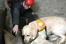 Na snímku člen záchrané brigády Pavel Málek z Jablonce hledá za pomocí speciálně cvičeného psa zavalenou osobu při lednovém výcviku v Terezíně.