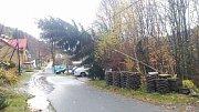 V Libereckém kraji dosahuje síla větru orkánu. V Tavaldě padl smrk na elektrické vedení.