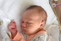 Rozárie Nesvadbová Narodila se 3. prosince v jablonecké porodnici mamince Radce Krčilové z Plavů. Vážila 3,5 kg a měřila 48 cm.