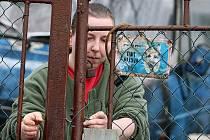 Chovatelka Eva Vorlová ze Smržovky svou osmadvacetičlennou psí smečku hájí. Chov zvládne i bez kastrace fen. Místní poplatky za nenahlášené psy bude muset v nejbližší době doplatit.