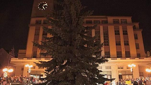 Vánoční strom v Jablonci.