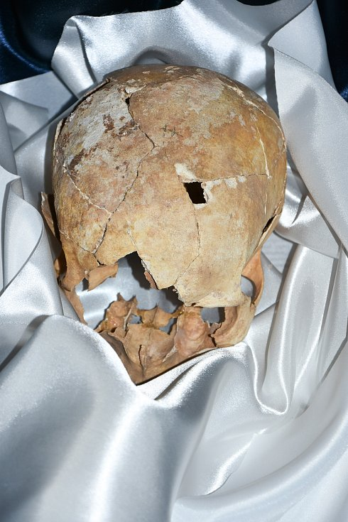 Uložení ostatků Valdštejnů, které byly nalezeny při archeologickém výzkumu.