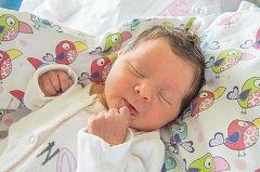 ANTONIE ZNOJEMSKÁ se narodila v pondělí 7. srpna mamince Ivetě Kvapilové z Albrechtic v Jizerských horách. Měřila 48 cm a vážila 3,49 kg.