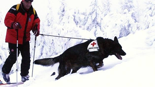 Pavel Hořejší s lavinovým psem německým ovčákem Benjim při tréninku v Jizerských horách.
