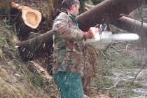 Silnici spojující farmu Filoun se světem zatarasily desítky popadaných stromů