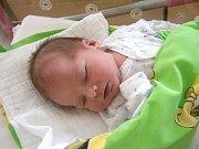 Tomáš Purkyt se narodil Kristině Hamáčkové a Ondřejovi Purkytovi z Prahy 19.8.2015. Měřil 51 cm a vážil 3600 g.