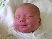 ISABELA LAGRONOVÁ se narodila Michaele Vikové a Filipovi Lagronovi z Jablonce nad Nisou 6.7.2016. Měřil 50 cm a vážil 3680 g.