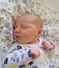 Viktorie Urbanová Narodila se 11. prosince v jablonecké porodnici mamince Veronice Vítkové z Malé Skály. Vážila 3,885 kg a měřila 51 cm.