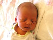 Stanislav Novotný se narodil Kristýně Haasové a Stanislavovi Novotnému 5.9.2016 ze Semil. Měřil 47 cm a vážil 2740 g