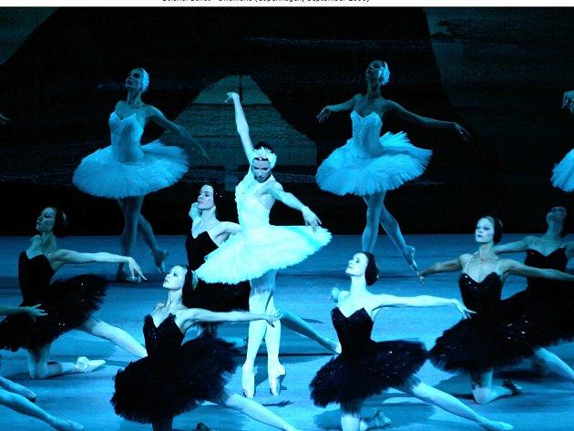 Kino Radnice promítá přímé přenosy z Balšoj baletu v Moskvě. Na snímku Labutí jezero