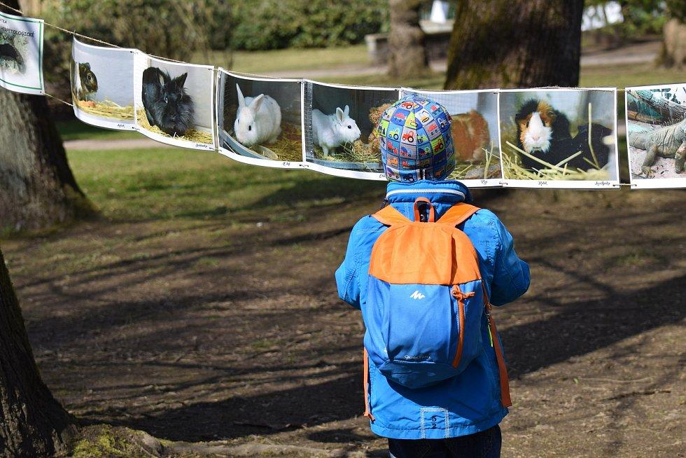 Naučná stezka ke Dni Země v Tyršově parku v Jablonci.