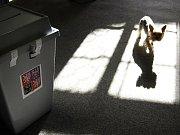 Volební okrsek č. 21 ve škole na sídlišti Hvězdárna v Jindřichově Hradci: Komise před 22. hodinou moc práce neměly, zapečetění urny s podpisem, odchod členů volebních komisí, zapečetění dveří.