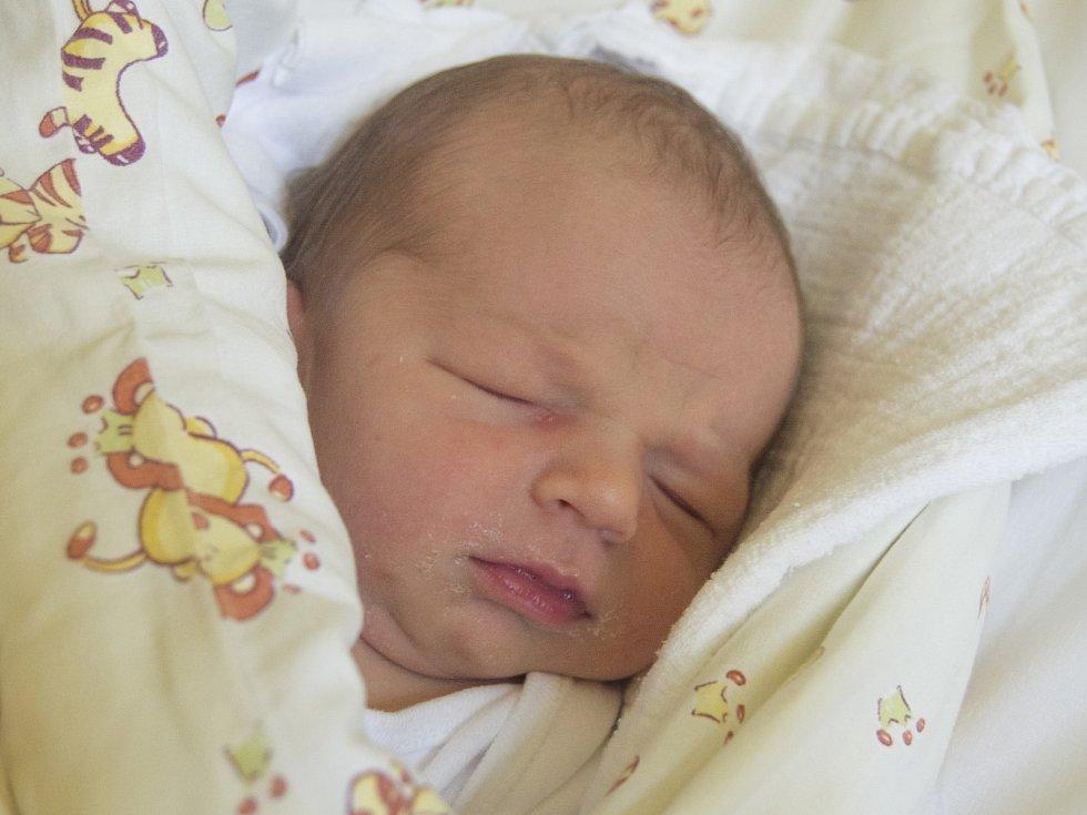 MATĚJ DŘEVIKOVSKÝ se narodil ve středu 2. srpna mamince Ivě Dřevikovské z Besedic. Měřil 50 cm a vážil 3, 51 kg.