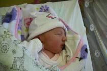 Nela Dvořáková. Narodila se 18.listopadu v jablonecké porodnici mamince Pavlíně Dvořákové z Alšovic. Vážila 3,07 kg a měřila 52 cm.