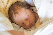 DOMINIKA ŠUBROVÁ se narodila v pondělí 11. prosince v jablonecké porodnici mamince Petře Šubrové z Držkova.  Měřila 47 cm a vážila 2,81 kg.