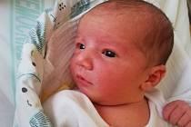 David Hrabaj Narodil se 10. února v jablonecké porodnici mamince Kateřině Hrabajové. Měřil 52 cm a vážil 3,76 kg.