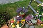 Zahrádkářská výstava Moje zahrada - moje hobby.