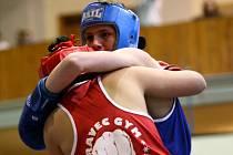 V oddílu boxu TJ Bižuterie  trénují od osmiletých boxerských nadějí až po muže.