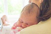 REBEKA ROSÁKOVÁ se narodila ve čtvrtek 3. května mamince Daniele Rosákové z Hrádku nad Nisou. Měřila 51 cm a vážila 4,08 kg.