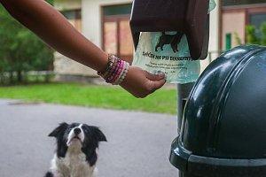 Sáčky na psí exkrementy na snímku z 17. července v Tyršových sadech v Jablonci nad Nisou.