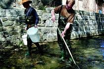 Uhynulé ryby museli z řeky Nisy vylovit Jan Chláde(vlevo) a David Popelka.