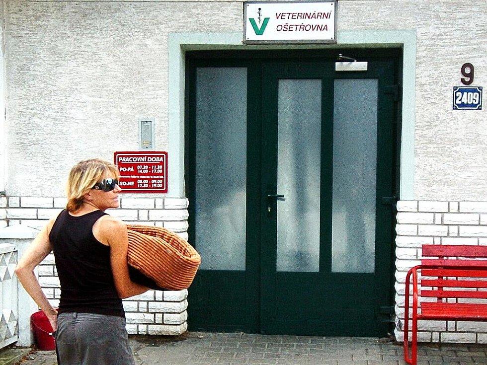 BOJUJE O ŽIVOT. Po majiteli se slehla zem. Veterinář Jaromír Baudyš vyšetřuje malého pejska ve své ordinaci. Vozí jej sem Dagmar Kubištová.