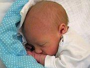 Adam Balda se narodil Stefánii a Romanovi Baldovým z Liberce 15.11.2016. Měřil 48 cm a vážil 3050 g
