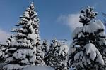 Zima ve Mšeně. Vzpomínka na 15. prosince 2010