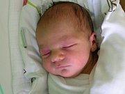 TEREZIE HUSÁKOVÁ se narodila Andree a Václavovi Husákovým z Liberce 1.6.2016. Měřila 50 cm a vážila 3520 g.