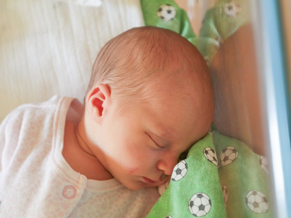 SOPHIE ANNA PAULÍČKOVÁ se narodila v sobotu 1. července mamince Sylvě Paulíčkové ze Stráže pod Ralském. Měřila 50 cm a vážila 3 kg.