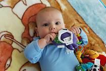 Třeba tohle miminko se jmenuje Matěj Sadílek a stalo se nesympatičtějším miminkem Benešovska 2011