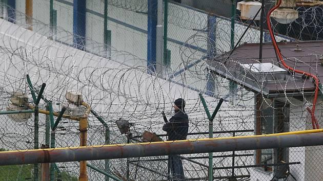 Pohled za plot Věznice Rýnovice