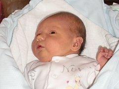 Barbora Zajícová se narodila Andree Hlaváčové a Janovi Zajícovi z Liberce 20. 1. 2014. Měřila 49 cm, vážila 3600 g.