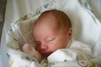 Leontýnka Zappová. Narodila se 3.května v jablonecké porodnici mamince Denise Culkové z Jablonce nad Nisou. Vážila 2,38 kg a měřila 49 cm.