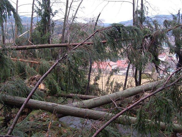 Pohled z místa popadaných stromů přes komunikaci v Plavech směrem na obec.