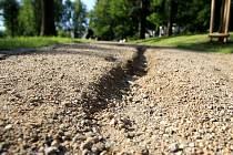Poničené cesty v lesoparku na Žižkově Vrchu.