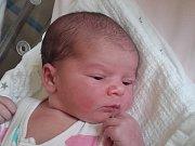 ANETA HARTMANOVÁ se narodila v úterý 18. července mamince Nikole Hartmanové z Turnova. Měřila 52 cm a vážila 3,81 kg.