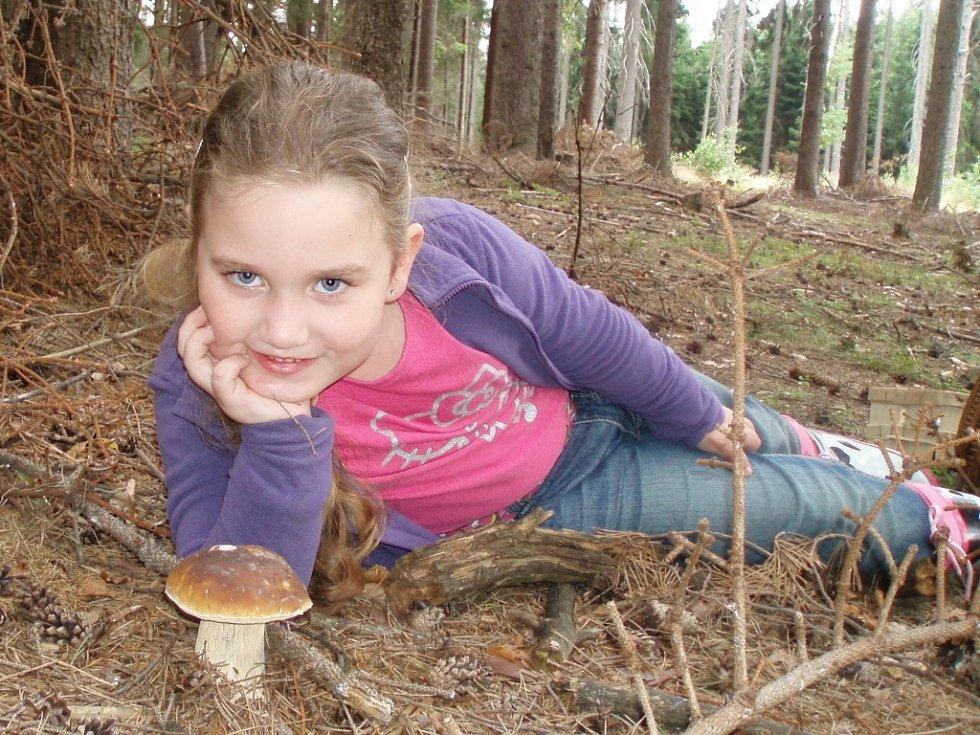 DO LESA S KOŠÍKEM A S FOTOAPARÁTEM. Ne všechno je jedlé... vícekrát. Něco jen jednou. Říkají s nadsázkou houbaři. Některé houby ale jedlé jsou, bezpečně je poznáte, ale přesto se nesmí sbírat.