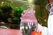 Jablonecko zásobuje vodou jizerskohorská přehradní nádrž Souš přes svou úpravnu v místě. Používá v konečné fázi úpravy UV záření a jen stopové prvky chloru. Má jednu z nejlepších vod v republice, které splňují i limity pro kojeneckou vodu.