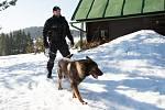 Kontrola zabezpečení chat proti krádežím v Bedřichově
