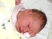 Viktorie Pacovská se narodila Adéle Staňkové a Lukášovi Pacovskému z Liberce 22. 10. 2014. Vážila 3610 g a měřila 49 cm.