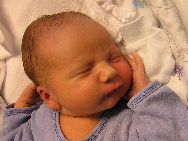 Štěpán Niedermertl se narodil Dianě a Pavlovi Niedermentlovým z Nové Vsi nad Nisou 17. 10. 2016. Měřil 52 cm a vážil 3073 g