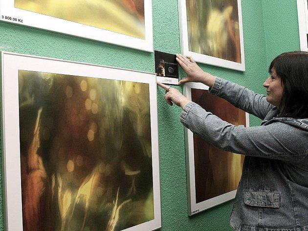 Benefiční aukce fotografií autorů z jabloneckého fotoklubu Balvan se v neděli uskutečnila v místní restauraci Terasa. Na snímku fotografka Zuzana Vitvarová u svých fotografií.