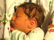 Yusuf Ahmet Bakis se narodil Lucii a Bekirovi Bakis 9.11.2016. Měřil 50 cm a vážil 3430 g.