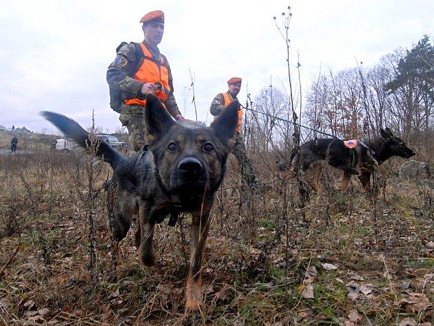 Někdy se do pátrání zapojují i armádní psovodi.