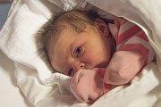 ŠTĚPÁNKA KRAUSOVÁ se narodila v pondělí 10.  dubna mamince Kláře Poustecké z Hodkovic nad Mohelkou. Měřila 48 cm a vážila 2,86 kg.