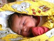 Melánie Mikešová se narodila Michale Hofericové a Michalovi Mikešovi z Velkých Hamrů 10.2.2015. Měřila 49 cm a vážila 3250 g.