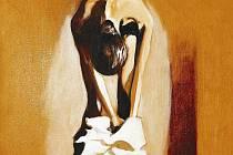 Svlékání tmy, Patrik Saudek. Výstava v Belvederu
