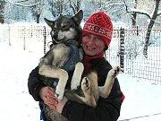 Jana Henychová se svým psím spřežením v Janově nad Nisou